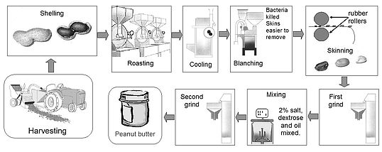 descriptive paper peanut butter sandwich Difference between peanut butter and jelly  the main ingredients in a peanut butter and jelly sandwich are peanut butter and jelly  descriptive analysis and .