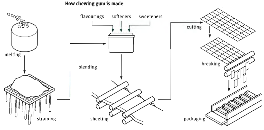 the production stages of chewing gum are illustrated by
