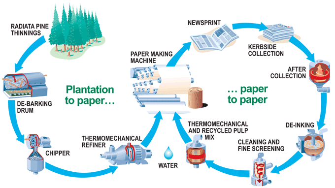 task   the manufacturing process for making paperafter cleaning process  next stage is thermo mechanical and recycled pulp mix which is used to mix the pulp  finally  the pulp product can be rolled to make