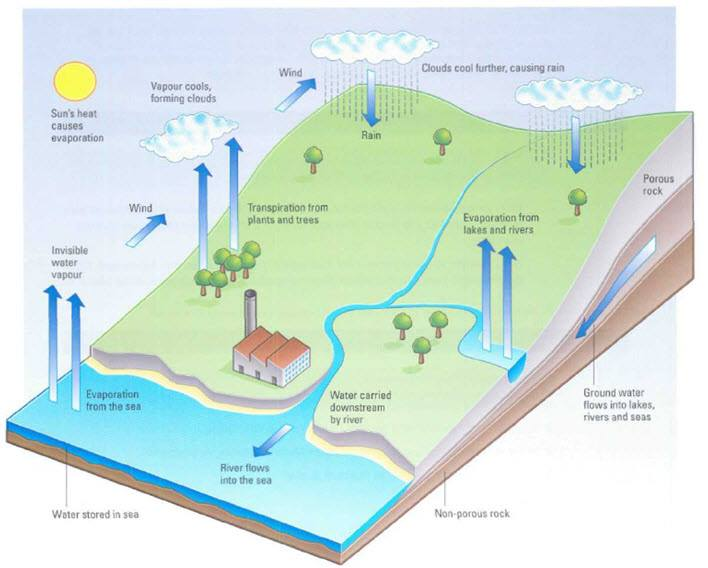 water cycle there are three main processes evaporation rain and rh essayforum com