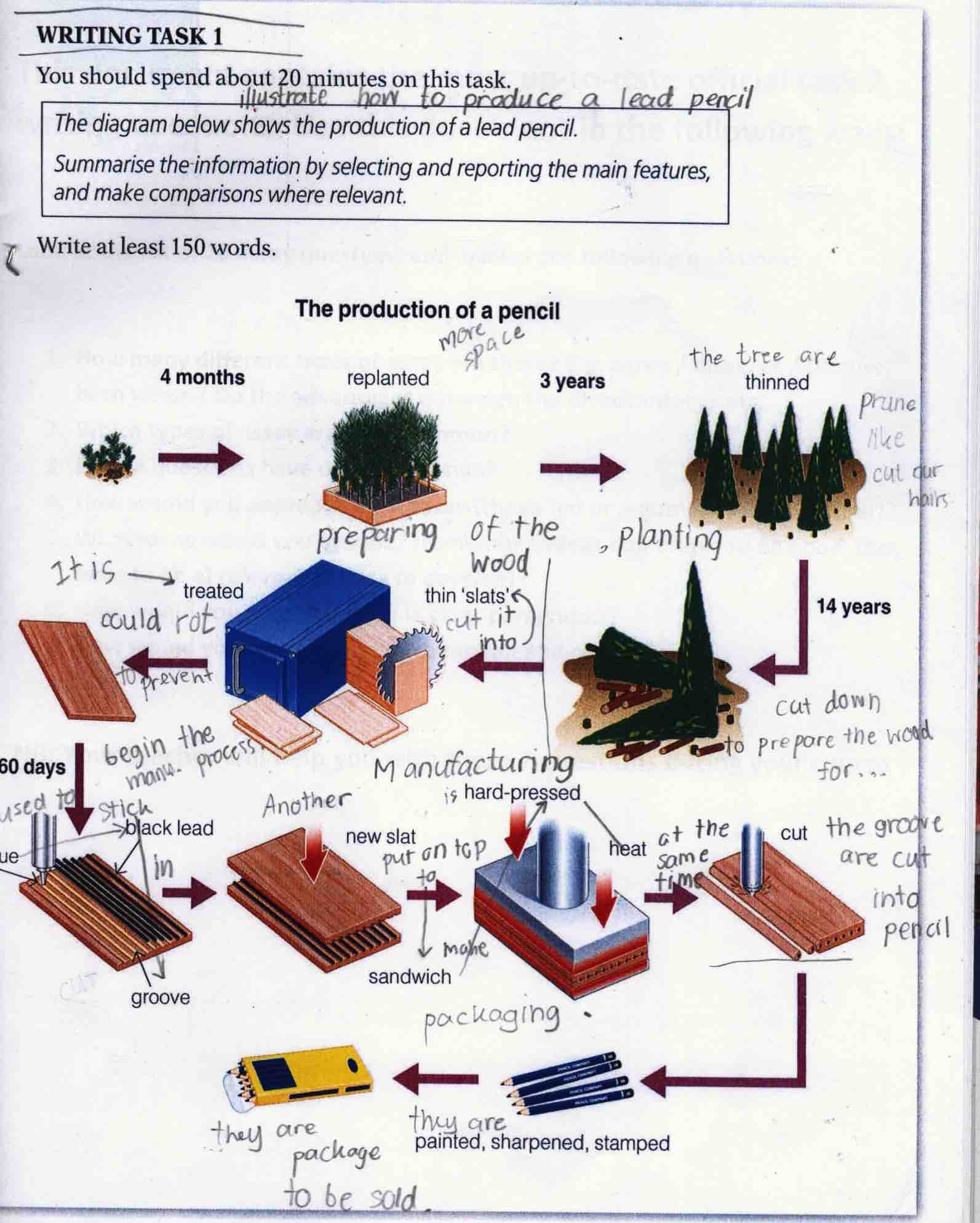 Ielts task 1 process the production of a lead pencil ccuart Images